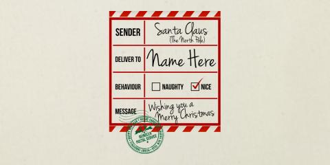 Special Delivery Custom Santa Sack